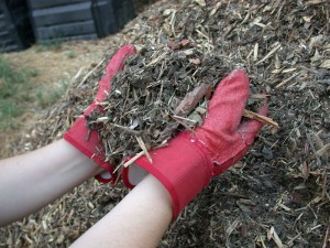 800px-Mulch_shredded_yard_waste