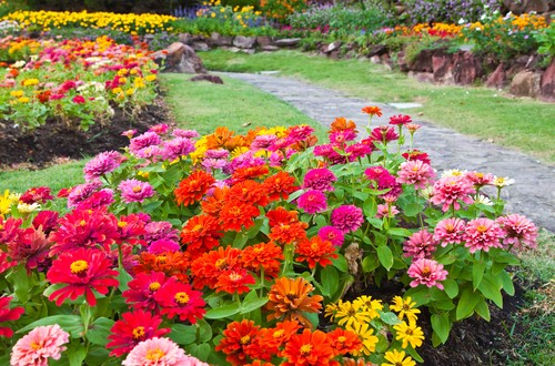 Getting gardens ready for spring extension daily for Low maintenance summer flowers