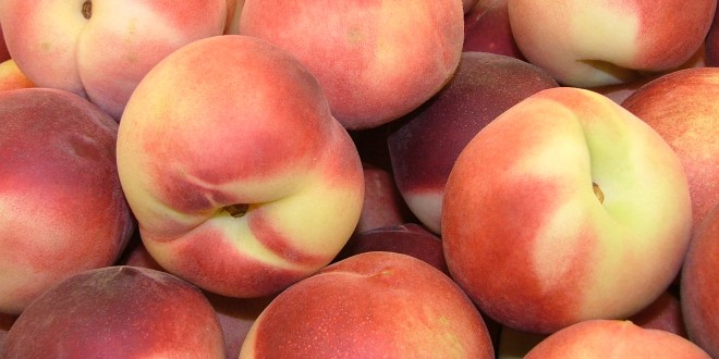Chilton Area Peach Production Meeting Tuesday, Jan.24 at 3 p.m.