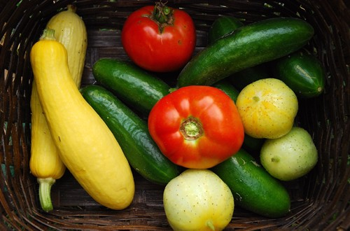 Growing Fruits and Vegetables in Alabama