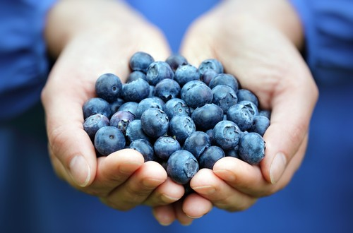 Boost your Immune System with Blueberries