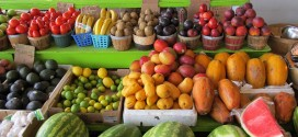 Grant Writing Webinar on Farmers Market and Local Food Promotion Program is Feb. 3