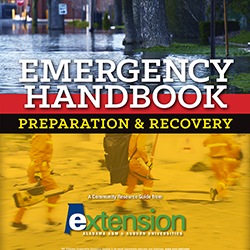 Handbook ad
