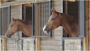 horse_stables_big