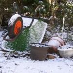 Best Practices for Home Gardens in Winter