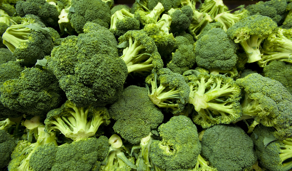 Food friday broccoli recipes keep diet healthy and for Broccoli casserole with fresh broccoli