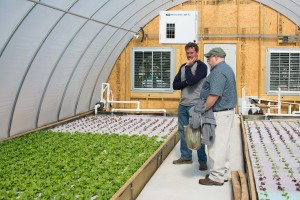 Ralf Du Toit, grower/owner of Extreme Green Hydroponics , and Dr. Joe Kemble discuss various ways of improving production of his crop in the future.