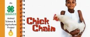 chickchain1-300x124