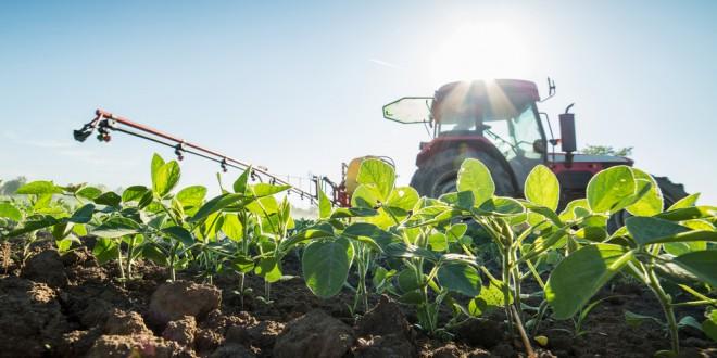 Managing Herbicide Resistant Weeds
