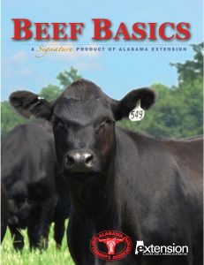 New Beef Basics cover