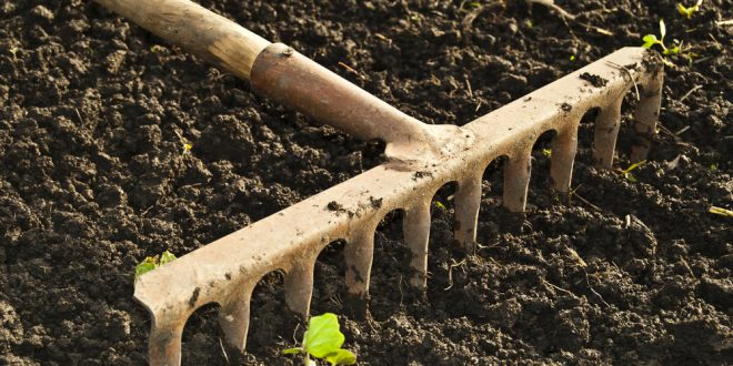 Preparing Soil for Spring Gardening Begins in the Fall