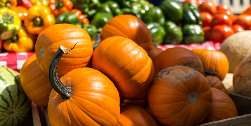 What is available at fall farmers markets