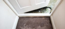 Prepare Now–Avoid Flood and Water Damage Later