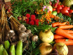 vegatables-unfrozen