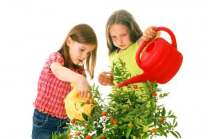 children-gardening-by-alexkatkov-at-shutterstock