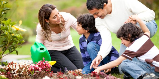 Family Gardening: Growing Together
