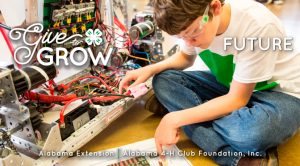 al4h-givetogrow-featured-image-for-wordpress-future