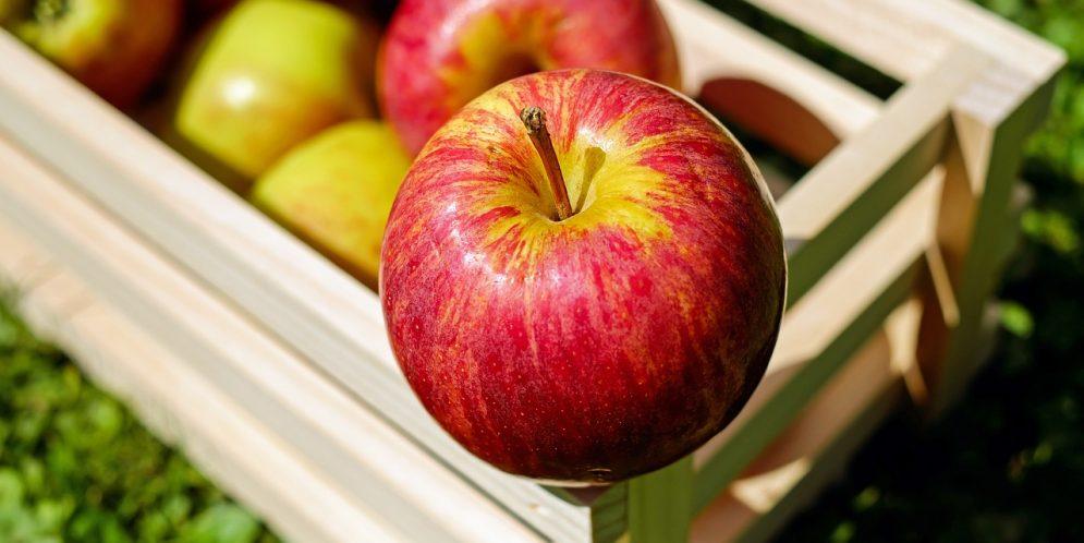 A New Twist on Apple Recipes