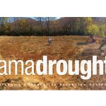 AlabamaDrought.com