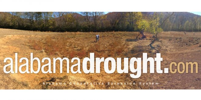 Drought Continues – Extension Launches Website