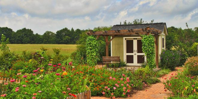 What is a Master Gardener and How Do I Join?