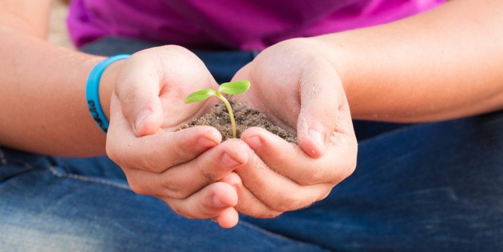 Alabama Green Industry Offers Online Job Site