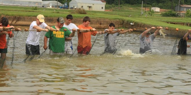 Fish Camp Slated for June