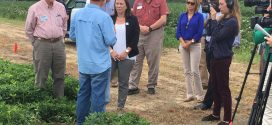 U.S. Rep.  Martha Roby Visits with Alabama Extension and Auburn University Scientists
