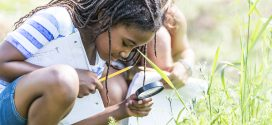 image of girl looking through magnifying glass into grass field