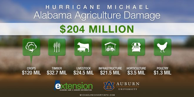 Hurricane Deals Heavy Blow to Alabama Agriculture