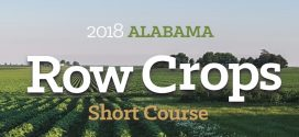 Alabama Row Crops Short Course Set for Dec. 13-14