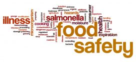 Food Safety Before and After the Storm