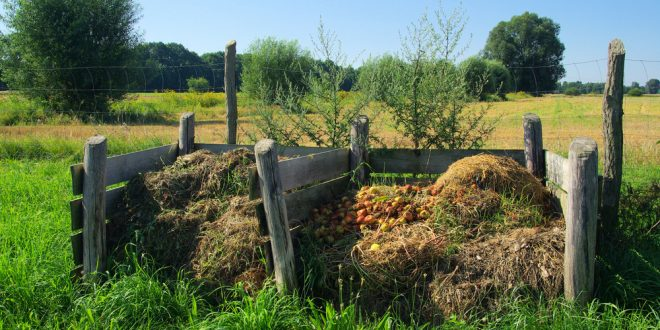 Composting Good for Environment and Homeowners
