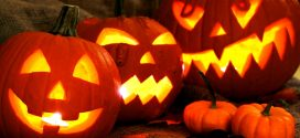 Extending The Life of Your Jack-O-Lantern this Halloween