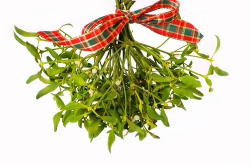 meet me under the mistletoe extension daily