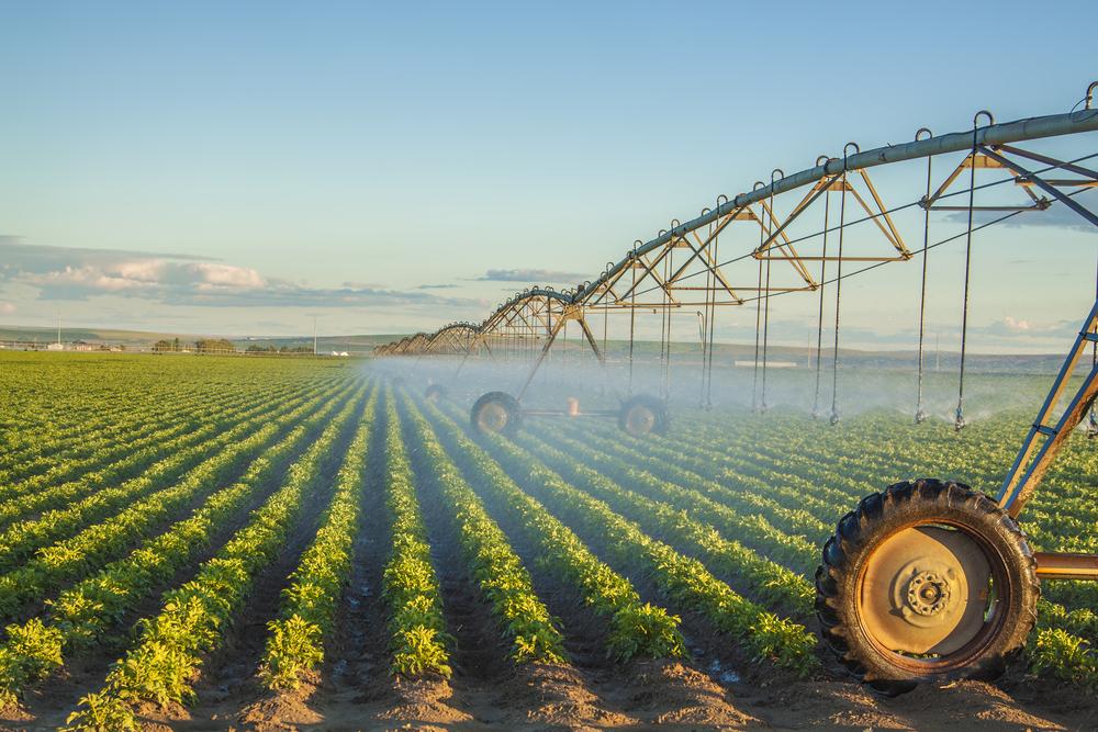 News/irrigation