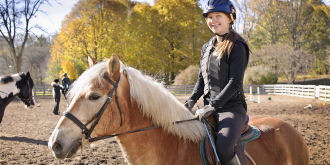 Auburn Animal Sciences Department To Host HORSE U Nov 12