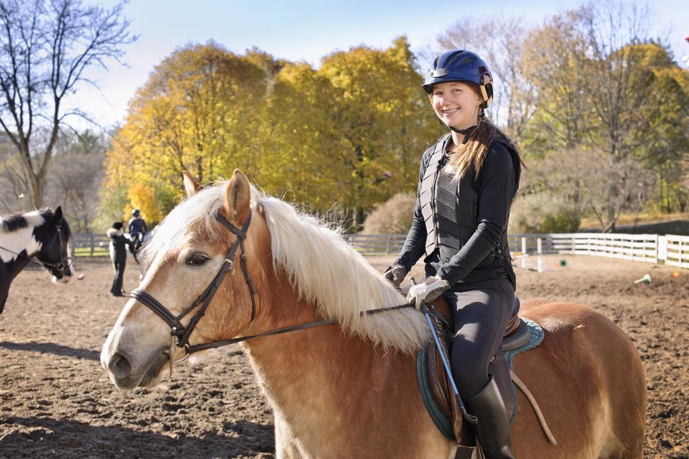 Auburn Animal Sciences Department To Host Horse U Nov 12