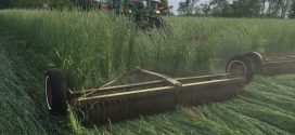 Cover Crop Field Days Set for Central, South Alabama