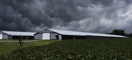 Poultry Producers Always Prepared for Severe Weather