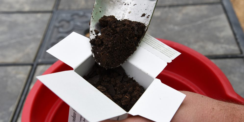 Successful Food Plots Begin with Soil Testing