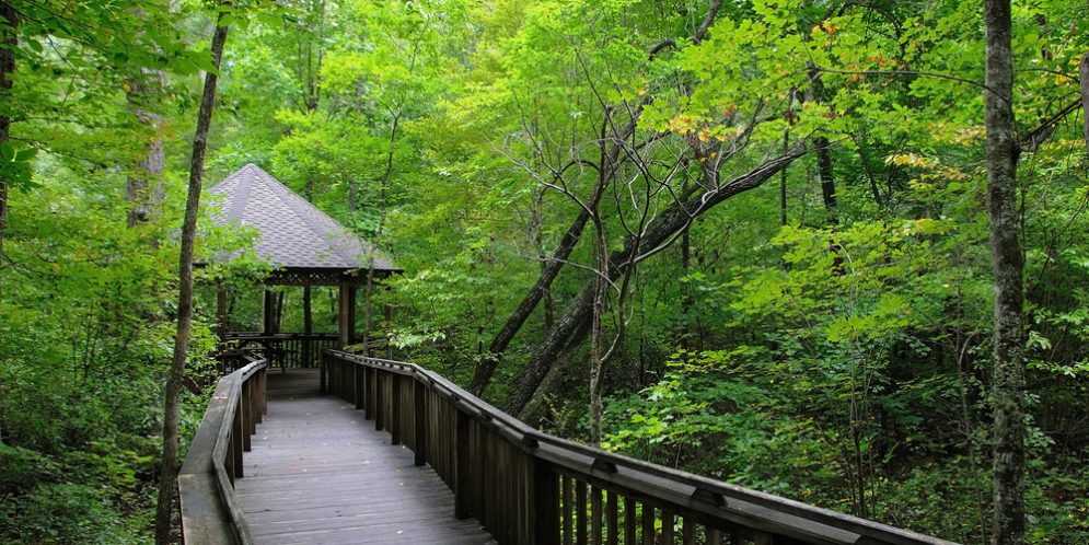 Alabama Extension Partners With Alabama State Parks
